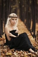 Autumn Muse_5 by Zvezdochet13