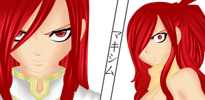 Erza vs Erza Color by Makishimu