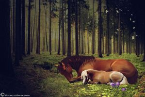 Friends by Horse101Luver2010