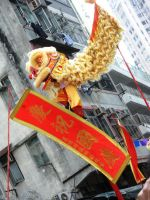 Lion Dance - National day 2008 by J4n3T