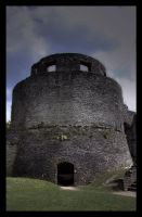 Dinefwr Castle (and grounds) II by Waeffe