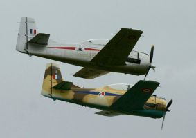 T28 FENNEC TWO SHIP 7 by Sceptre63