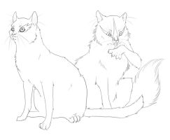 jellicle cats-lineart by Miraged-wings