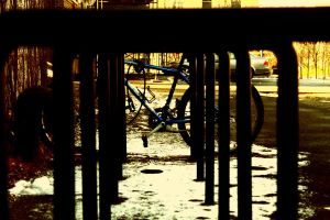 bicycle by WillTraven