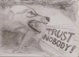 TRUST NOBODY by JJShaver