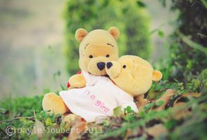 Winnie and his lady 4 by luvsinspiration