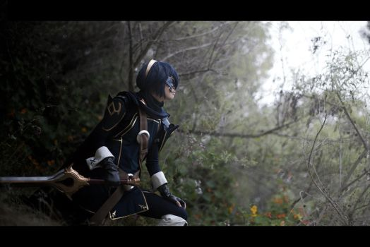 Fire Emblem Awakening - To the Future by Gwiffen
