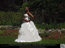 Blushing African American Bride by DamselStock