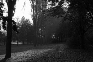 Lonely in the park by Gautama-Siddharta