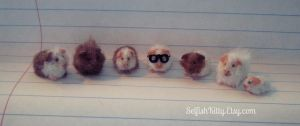 Gathering of Guinea Pigs by SelfishKitty