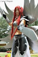 Fairy Tail: Tenrin no Yoroi by xXSnowFrostXx
