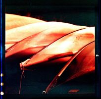 Redscale Canoes by ACBusse