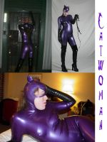 Catwoman V3 - Jim Balent by Catwoman69y2k
