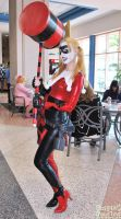 Metrocon 2011 42 by CosplayCousins