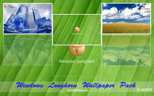 Longhorn WallPaper Pack_1 by sagorpirbd