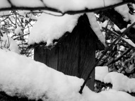 Snow-Covered Birdhouse by EliseIsVain
