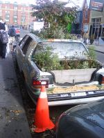 Plant Car O_O in Toronto by carmietee
