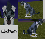 Watson Preset by Jolts-of-Blue