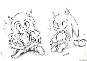 9 sitting correctly  sonic by bbpopococo
