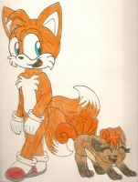 AT: Tail Buddies by dragonpop1