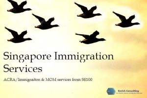 Immigration consultants in Singapore by enrichconsulting