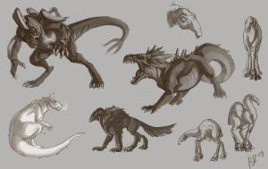 SW animal studies by Kerneinheit
