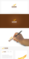 Corporate identity Gawor by lukearoo