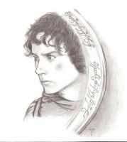 Frodo 3 by Wild-Huntress