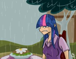 Twilight! Its raining! by frankaraya