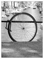 Wheel protection by bupo