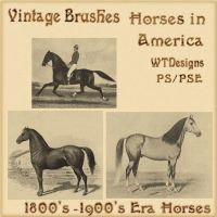 Vintage Brushes Horses by WhimzyTreasures