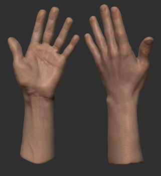 Half 3D scanned hand by FredrikH
