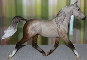 Breyer Prince Charming Stock by Lovely-DreamCatcher