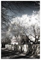 Country House by Alex-Brill