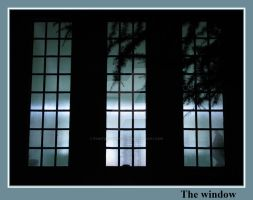 The window by painting-with-light