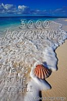 3,000 PAGEVIEWS by lilbrokenangel