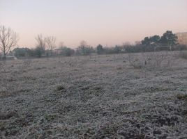 frosty morning 3 by indeed-stock