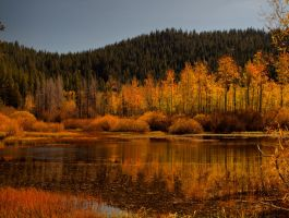 Fall pond 2 by MartinGollery
