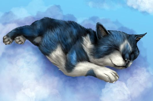 Rest In Peace by Toyger