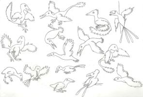 A Panoply of Pennaraptors by Albertonykus