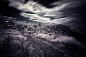 Path Home IR by CainPascoe