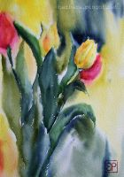 Friday tulips by stokrotas