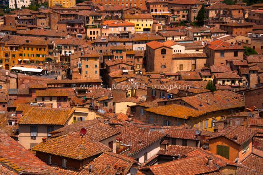 Siena Rooftops, Contest Finalist by Mikeanike1123