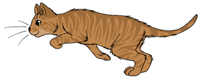 ThunderClan - Oddfoot by WildpathOfShadowClan