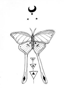 hipster moth by starsinmyteacup