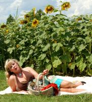 picnik with the sunflowers by coffeeguy