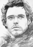 Robb Stark by crysaniasea