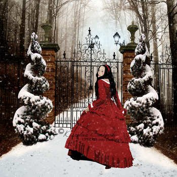 Little Red .:Into the Woods:. by Karolina-Borkowski