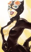 CATWOMAN by Sii-SEN
