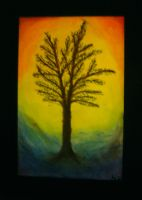 Rainbow Tree by nfaas
